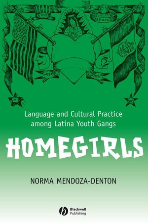 Homegirls: Language and Cultural Practice Among Latina Youth Gangs (1118910877) cover image