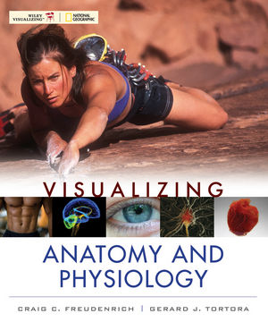 Visualizing Anatomy and Physiology, First Edition Wiley E-Text: Powered by VitalSource High School 6 Year Access