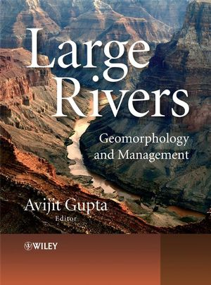 Large Rivers: Geomorphology and Management (0470849878) cover image