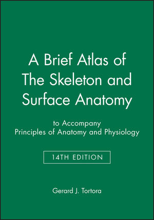 A Brief Atlas of The Skeleton and Surface Anatomy to accompany ...