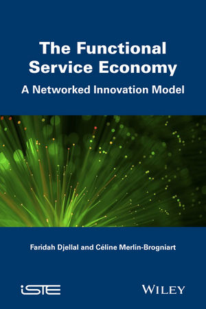 The Functional Service Economy: A Networked Innovation Model