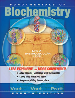 Fundamentals of Biochemistry: Life at the Molecular Level, 4th Edition Binder Ready Version