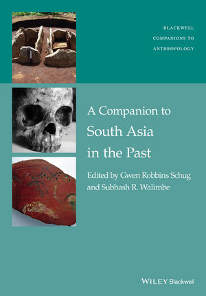 A Companion to South Asia in the Past (1119055482) cover image