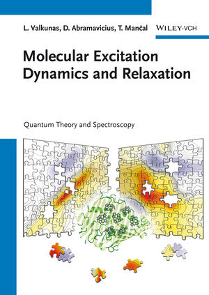 Molecular Excitation Dynamics and Relaxation: Quantum Theory and Spectroscopy (3527410082) cover image