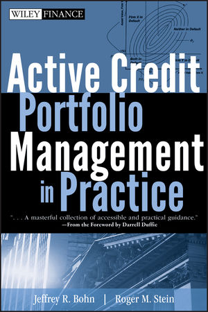 Active Credit Portfolio Management in Practice (0470080183) cover image