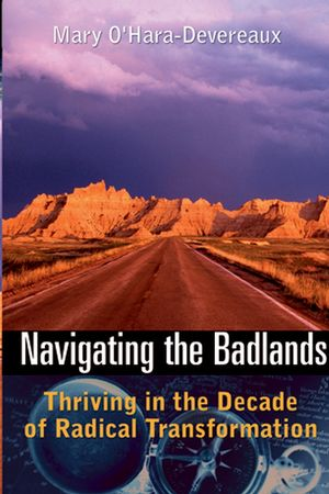 Navigating the Badlands: Thriving in the Decade of Radical Transformation (0787971383) cover image