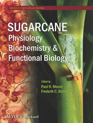Sugarcane: Physiology, Biochemistry and Functional Biology (1118771389) cover image