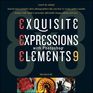 Ex3: Exquisite Expressions with Photoshop Elements 9 (1118073991) cover image