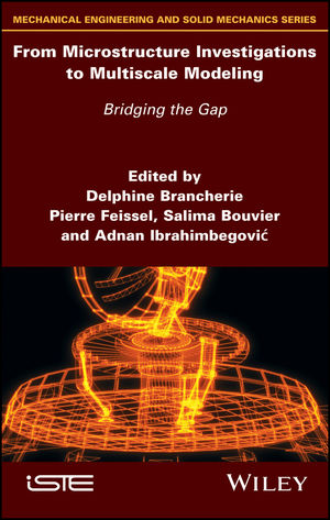 From Microstructure Investigations to Multiscale Modeling: Bridging the Gap