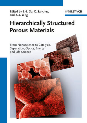 Hierarchically Structured Porous Materials: From Nanoscience to Catalysis, Separation, Optics, Energy, and Life Science (3527639594) cover image