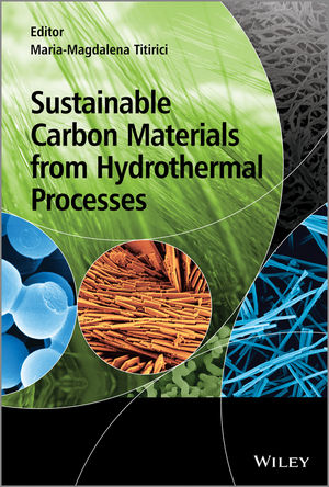 Sustainable Carbon Materials from Hydrothermal Processes (1119975395) cover image