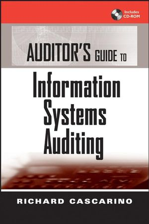 Information System Audit Pdf
