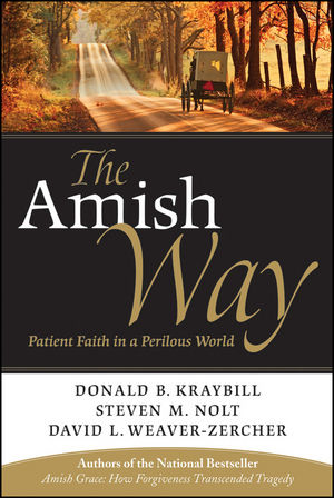 The Amish Way: Patient Faith in a Perilous World (0470520698) cover image