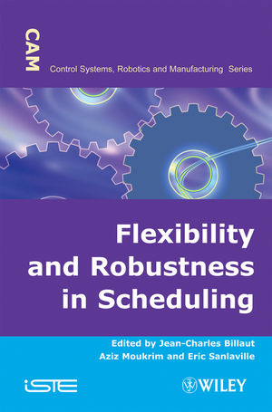 Flexibility and Robustness in Scheduling (1118623398) cover image