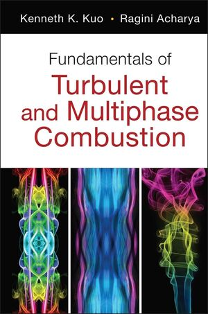 Fundamentals of Turbulent and Multi-Phase Combustion (111809929X) cover image