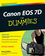 Canon EOS 7D For Dummies (0470595914) cover image