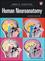 Human Neuroanatomy, 2nd Edition (0470961619) cover image