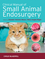 Clinical Manual of Small Animal Endosurgery (1405190019) cover image