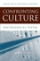 Confronting Culture: Sociological Vistas (0745625622) cover image