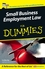 Small Business Employment Law For Dummies (1119998123) cover image