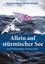 Allein auf sturmischer See: Risikomanagement für Einsteiger, 3. Auflage (3527808523) cover image