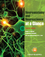 Neuroanatomy and Neuroscience at a Glance, 4th Edition (1118368525) cover image