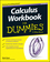 Calculus Workbook For Dummies, 2nd Edition (1119013925) cover image