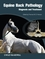 Equine Back Pathology: Diagnosis and Treatment (1405154926) cover image