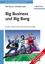 Big Business und Big Bang: Berufs- und Studienführer Physik, Zweite, aktualisierte und erweiterte Auflage (3527661832) cover image