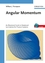 Angular Momentum: An Illustrated Guide to Rotational Symmetries for Physical Systems (3527617833) cover image
