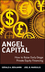 Angel Capital: How to Raise Early-Stage Private Equity Financing (0471690635) cover image