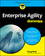 Enterprise Agile For Dummies (1119446139) cover image