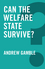 Can the Welfare State Survive? (0745698743) cover image