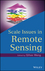 Scale Issues in Remote Sensing (1118305043) cover image