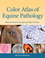 Color Atlas of Equine Pathology (0470962844) cover image