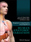 Bergman's Comprehensive Encyclopedia of Human Anatomic Variation (1118430352) cover image