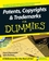 Patents, Copyrights and Trademarks For Dummies, 2nd Edition (0470339454) cover image
