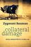 Collateral Damage: Social Inequalities in a Global Age (0745652956) cover image