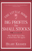 The Little Book of Big Profits from Small Stocks + Website: Why You'll Never Buy a Stock Over $10 Again (1118150058) cover image