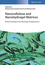 Nanocellulose and Nanohydrogel Matrices: Biotechnological and Biomedical Applications (3527803858) cover image