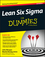 Lean Six Sigma For Dummies, 3rd Edition (1119067359) cover image