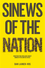 Sinews of the Nation: Constructing Irish and Zionist Bonds in the United States (074566265X) cover image
