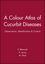 A Colour Atlas of Cucurbit Diseases: Observation, Identification and Control (0470234164) cover image