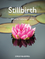 Stillbirth: Prediction, Prevention and Management (1444337068) cover image