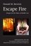 Escape Fire: Designs for the Future of Health Care (0787972177) cover image