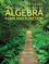 Algebra: Form and Function Cloth, 2nd Edition (1119047277) cover image