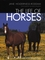 The Life of Horses (158245048X) cover image