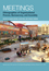 Meetings: Ethnographies of Organizational Process, Bureaucracy and Assembly (1119405890) cover image