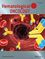 Hematological Oncology (HON2) cover image