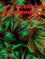Journal of Cellular Biochemistry (JCB2) cover image